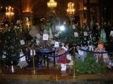 2007 - Les Sapins d'Action Innocence Monaco